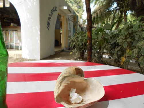 Sitting at a table with a shell ashtray in the middle. Casse Afrique Guesthouse, Zeguinchor.