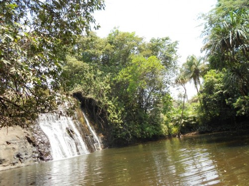 One of the waterfalls and surrounding trees.