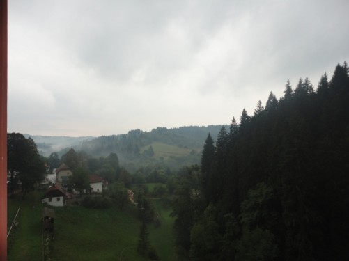 Looking across a green, leafy, slightly misty valley from Predjama Castle.