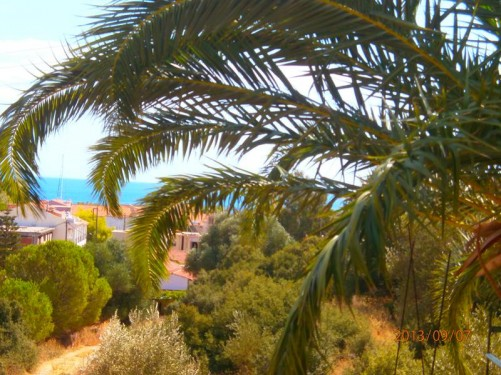 View through palm fronds across Agia Eufemia village to the blue sea. This is the village where Tony and Tatiana stayed.