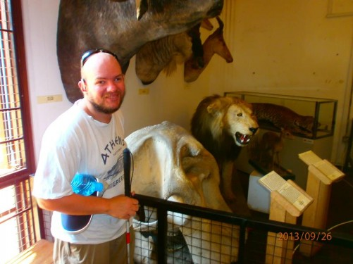 Tony touching an elephant's scull. A number of stuffed animals can be seen behind, including a lion and leopard.