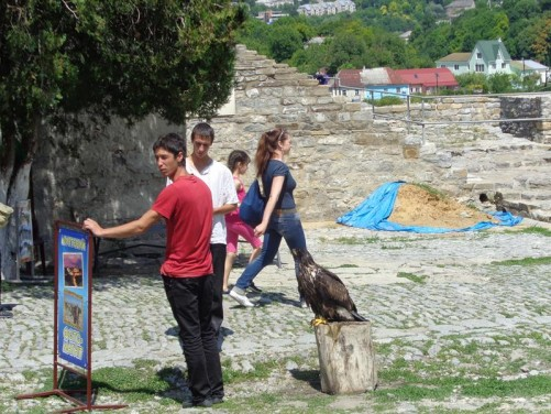 A bird of prey sitting on a wooden block for passing tourists to photograph. Supervised by two boys.