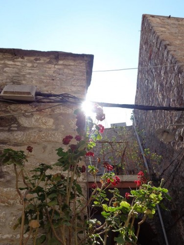 Flowers growing against the high stone walls of a house.
