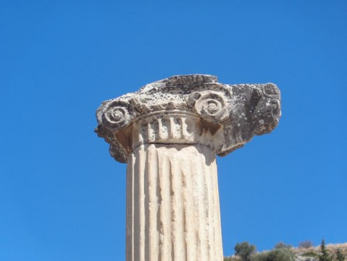 Close-up of the top of one of the Ionic style columns.