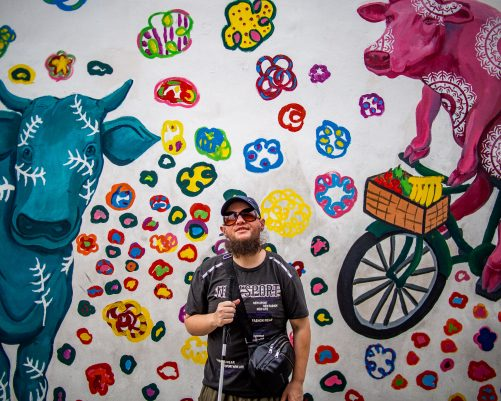 Tony in front of a brightly coloured wall mural. It includes a pink cow riding a bicycle! There is fruit in the bicycle's basket. There is also a blue bull. This might be near the former cattle market. The mural is called Cattleland 2 by Eunice Lim. Located on a wall on Kerbau Road, Little India.