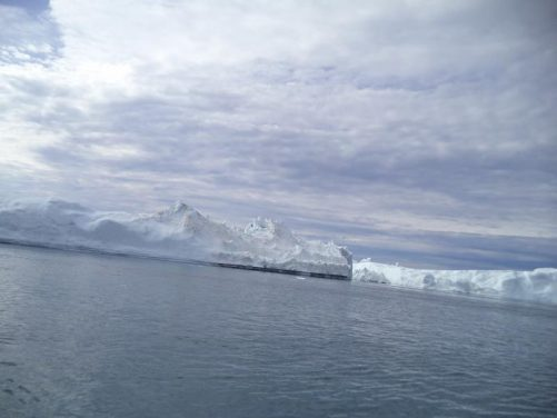 Icebergs. Sea birds flying in the distance, seen as tiny dark specks against the white of the ice.