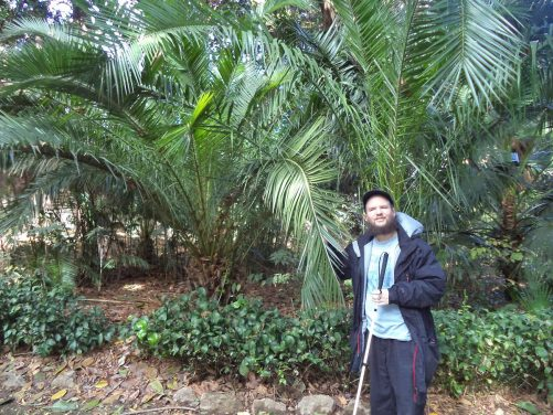Tony holding the leaves of a palm tree.
