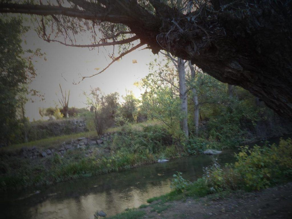 Melendiz Stream shaded by trees.