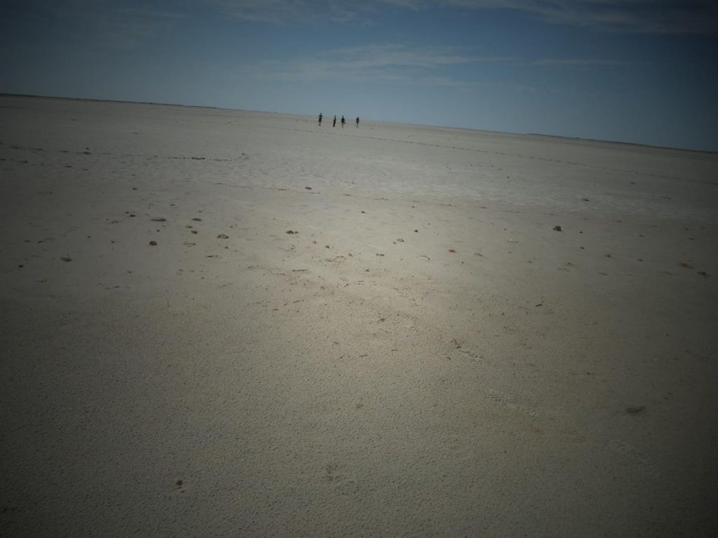 Looking across the Nwetwe Salt Pan. This very flat landscape is covered with salt and other minerals and extends off into the far distance. A group of four people walking in the near distance. This area becomes a lake during the rainy season.