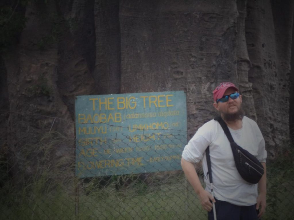 A sign at the foot of the giant baobab tree names it as 'The Big Tree' and estimates its age at 1000 to 1500 years. Tony next to the sign.