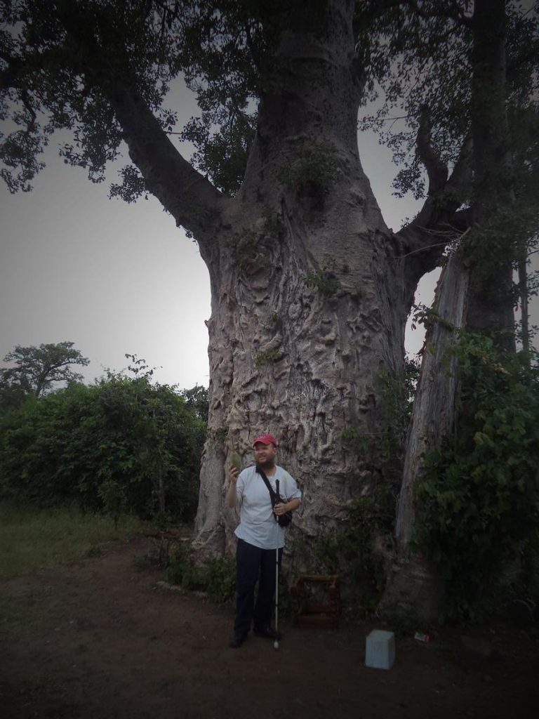 Tony in front of another smaller baobab tree holding one of its fruits. The fruit is an extended ovular shape and is brownish green in colour. These fruits typically weigh around 1.5 kilograms. This smaller baobab can be touched and has no barrier.