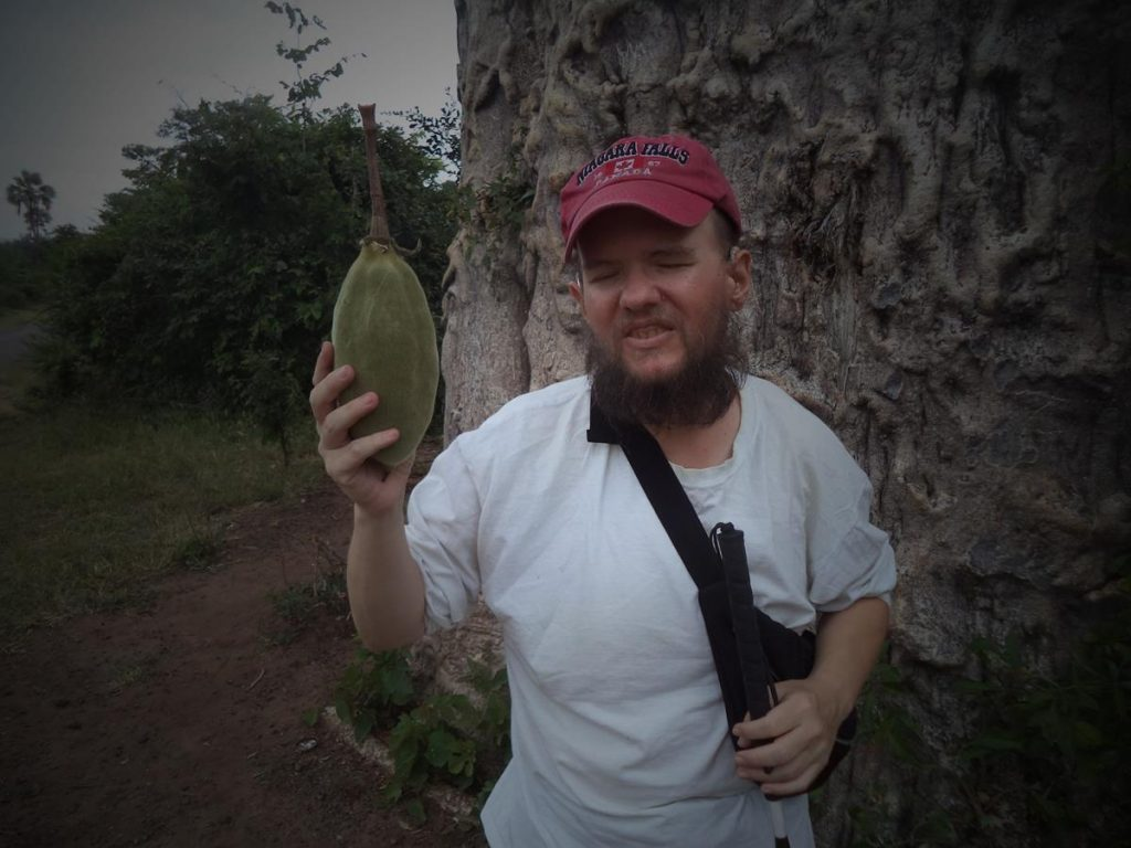 Closer view of Tony holding the baobab fruit. The fruit has a soft, furry outer skin.