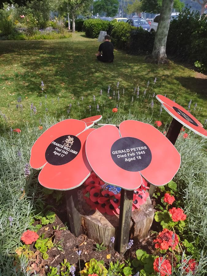 Close-up of large artificial poppies in the memorial flower bed. They show the names and ages of naval cadets killed in World War II.