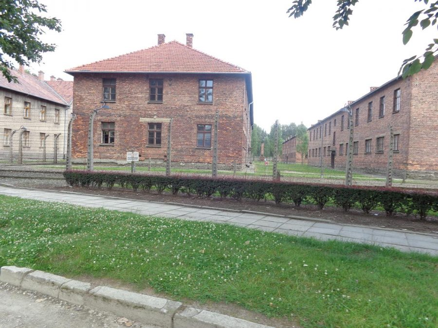 A double barbed wire fence around Auschwitz I camp. This fence would have been electrified. Some prisoners killed themselves on the electrified fence to avoid the cruel punishments and torture handed out at the camp.