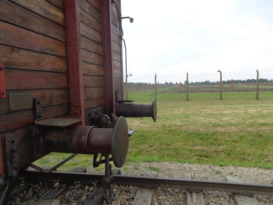 A railway wagon. These were used to transport prisoners from various regions and countries of occupied Nazi Germany to concentration and extermination camps such as Auschwitz-Birkenau.