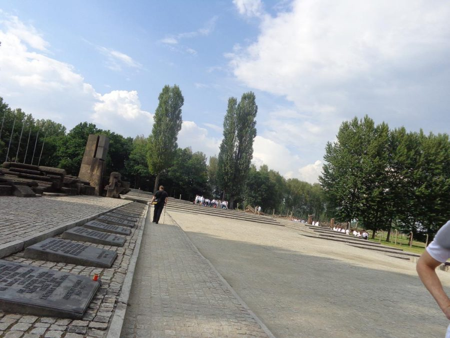 Another view of the memorial plaques at the International Memorial to the Victims of Auschwitz Camp. Behind are stone sculptures, mostly abstract in form, extending for 50 metres, with horizontal and vertical shapes with rough and smooth surfaces. This monument was designed by Italian architects Andrea and Pietro Cascella, and created in collaboration with Polish and Italian artists Jerzy Jarnuszkiewicz, Julio Lafrente and Giorgio Simoncini. It was completed in 1967.